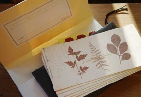 CARD SET_leaf